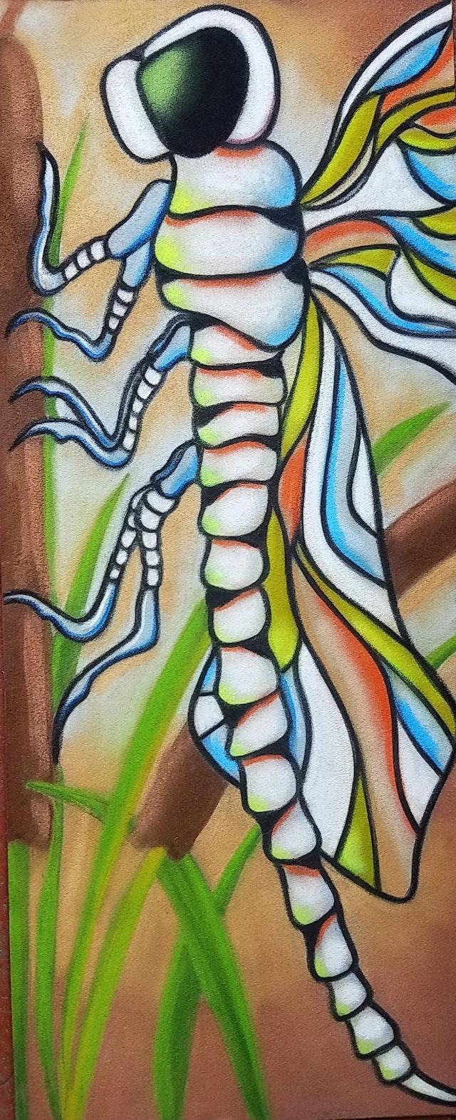 Robyn-Dragonfly