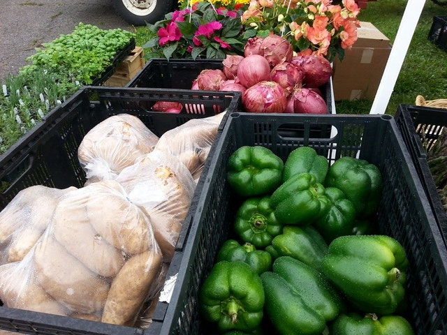 farmar_veggies